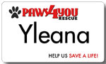 Printed Aluminum Nametag - Paws4You